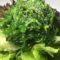 501. Algen Salad